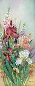 Burgundy Irises with Foxgloves