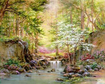 Nature's Retreat