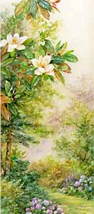 Magnolias & Hydrangeas