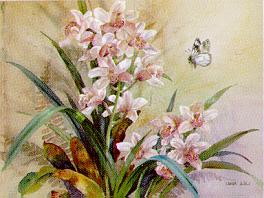 Cymbidium w/White Butterfly