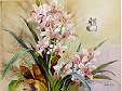 Cymbidium w/White Butterfly