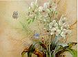 Phalaenopsis w/Blue Butterflies
