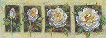 Transformation I- Roses